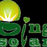 Bingsolar Power Technology Co,.Limited